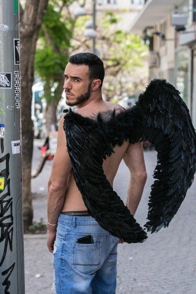 Medium Size Feathered Wings